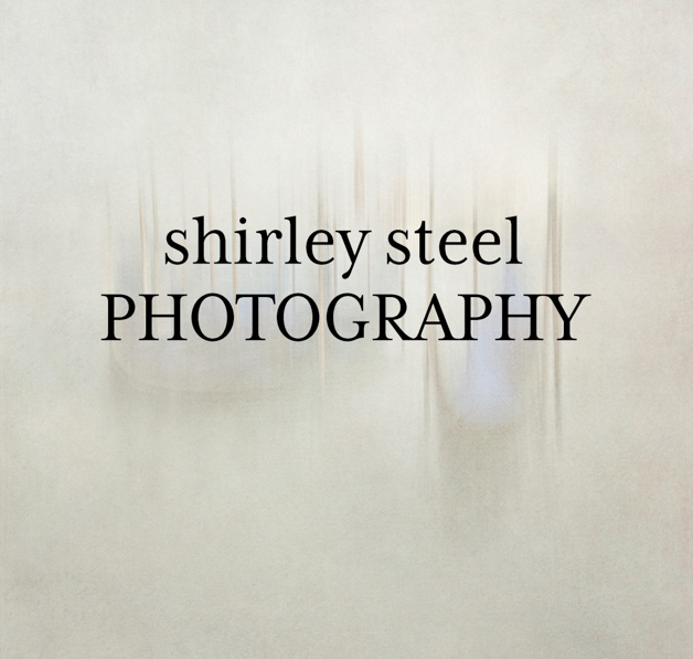 Shirley Steel's Blog Logo